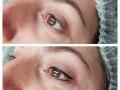eyeliner winged
